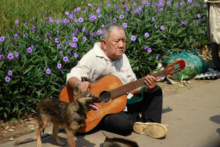 kẻ trộm chó - ông già và con chó