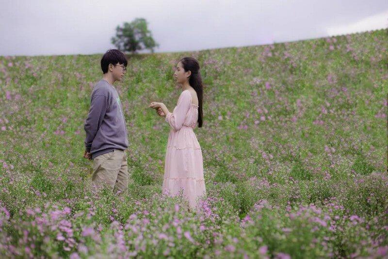 Thạch & Thảo có phân cảnh lãng mạn tại cánh đồng hoa thạch thảo