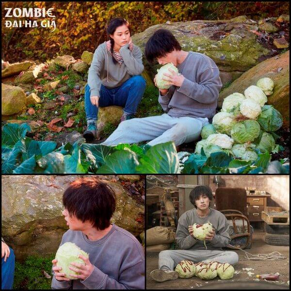 Bắp cải là món ăn khoái khẩu của zombie - Zombie đại hạ giá