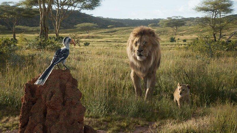 Simba và bố