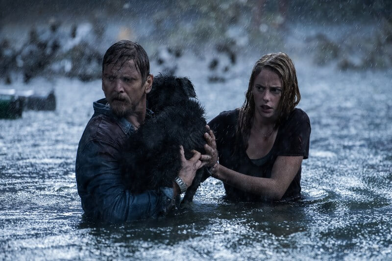 Hai cha con phải vật lộn trong cơn bão hòng thoát khỏi lũ cá sấu tử thần