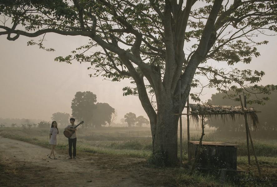Cái cây quen thuộc ở làng Đo Đo trong truyện Mắt Biếc