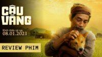 Banner review phim Cậu Vàng